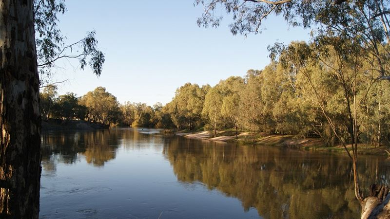 Murray-Darling Basin Plan essential to the health of the Coorong