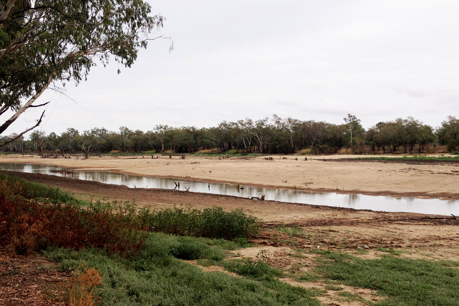 Balonne River in drought